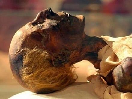Head of a mummy